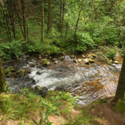 Girmont-Val-d'Ajol 8 villas