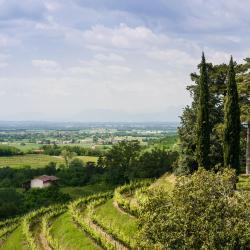 Capriva del Friuli 8 hotels