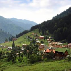 Ayder Yaylasi 53 hotels
