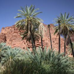 Al-ʿUla 3 campgrounds