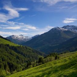 Ried im Zillertal 3 homestays
