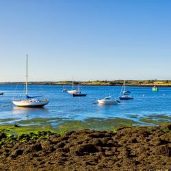 Oranmore 15 hotels