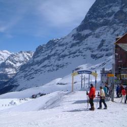 Scheidegg 46 Hotels