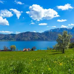 Nussdorf am Attersee 15 hotels