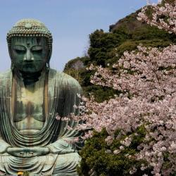 Kamakura 91 hotelů