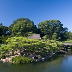 Okayama 95 hotels