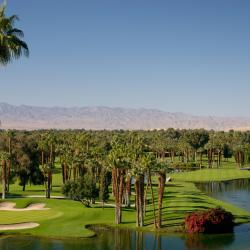 Palm Desert 118 hotels