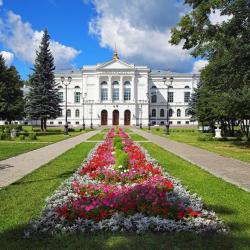 Томск 517 отелей