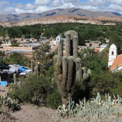 La Quiaca 11 hotels