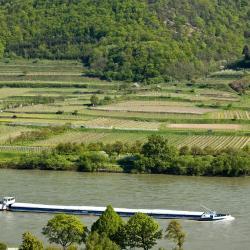 Mautern an der Donau 10 Hotels