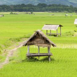 Louang Namtha 13 hotels