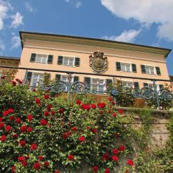 Geisenheim 11 hotels