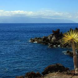 Playa Calera 5 hoteles
