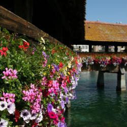 Rothenburg 3 hotels