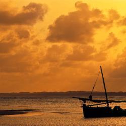 Lamu 43 hotels