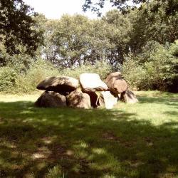 Tynaarlo 4 campsites