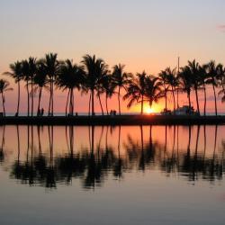 Waikoloa 262 hotelů