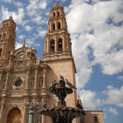 Chihuahua 95 hoteles