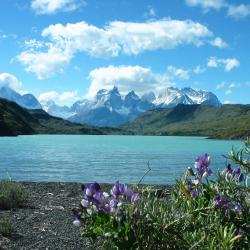 Torres del Paine 20 hotels