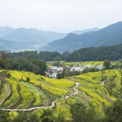 Wuyuan 73 hoteluri