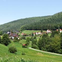Baiersbronn 4 homestays