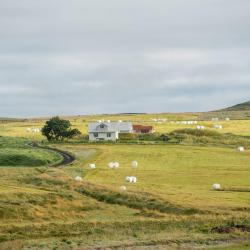 Hlíðarendi 4 hotels