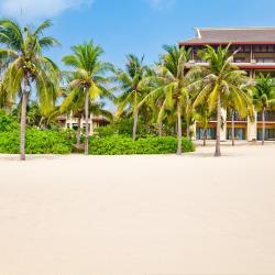 Changjiang 4 hotels