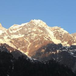 Lachung 4 pet-friendly hotels