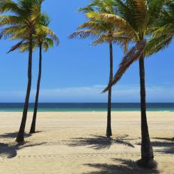 Palm Beach Shores 11 hotels