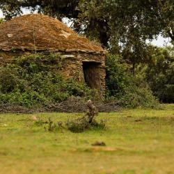 San Martín de Trevejo 4 casas rurales