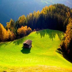 Wald am Arlberg 32 hotels