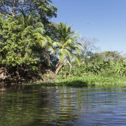 Moyogalpa 6 homestays
