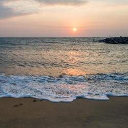Ohope Beach 20 hotels