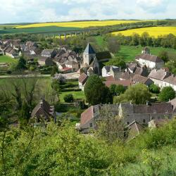 Druyes-les-Belles-Fontaines ホテル4軒