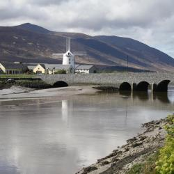 Tralee 4 guest houses
