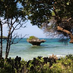 Chale Island