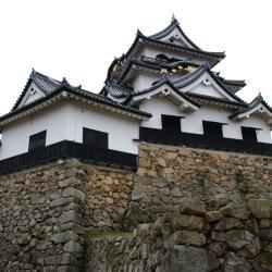 Hikone 24 hotels