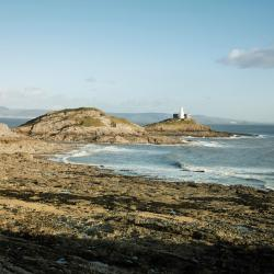 The Mumbles 65 hotels