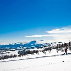 Oppdal 4 campgrounds