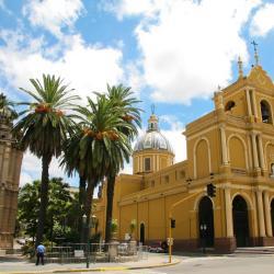 San Miguel de Tucumán 237 hotels