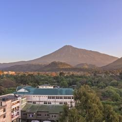 Arusha 3 country houses