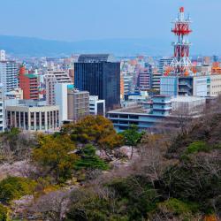 Wakayama 44 hotels