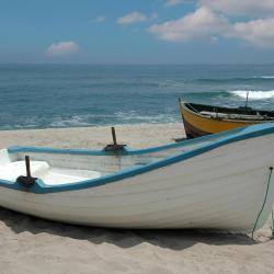 Peregian Beach 34 hotels