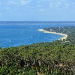Le Cap Ferret 41 hôtels