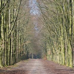 Bilthoven 4 self catering properties
