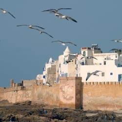 Ghazoua 13 hotels