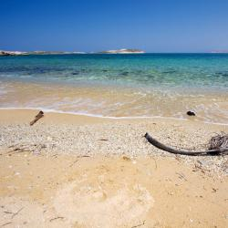 Agios Sostis Mykonos 3 pet-friendly hotels