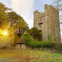 Durrow 3 budget hotels