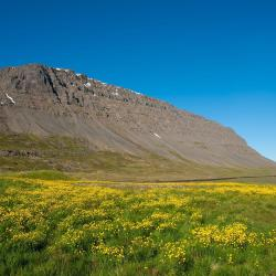 Patreksfjörður 10 hótel