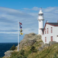 Rocky Harbour 12 hotels